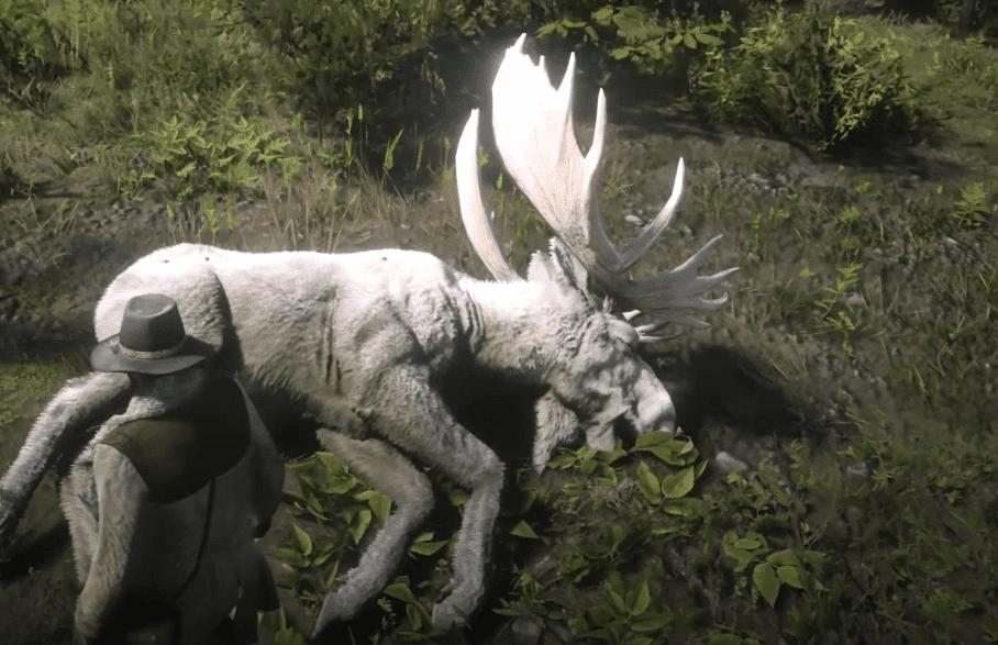Legendary Moose rd2